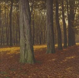 Woody Landscape